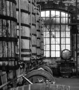 assemblage cognac Frapin
